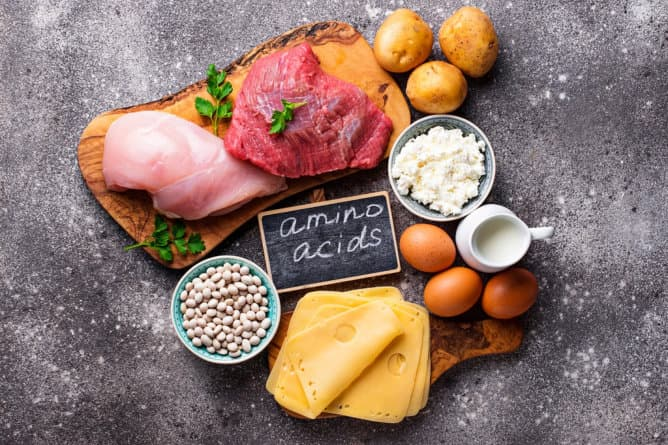 The Benefit of Proteins to Your Diet